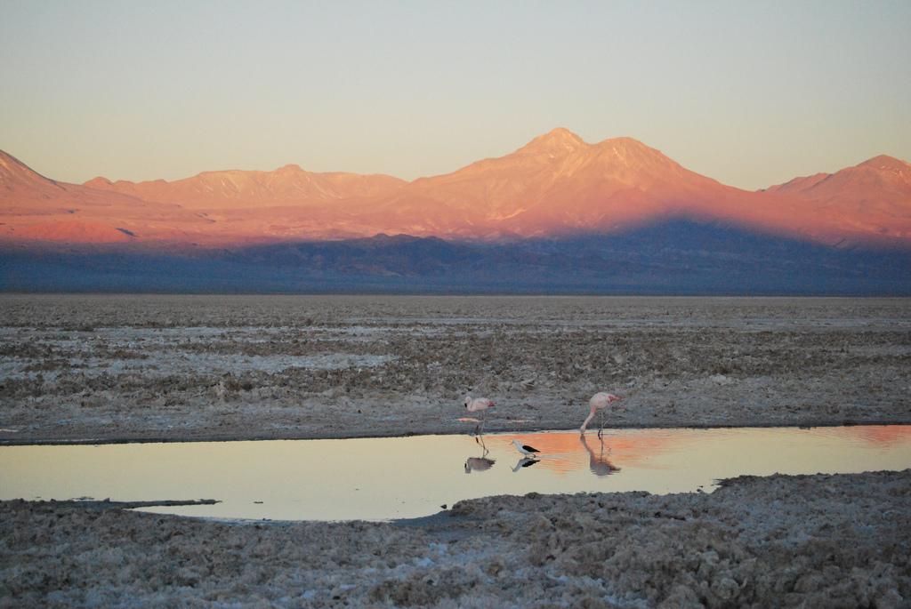Si amas el turismo, amarás Chile