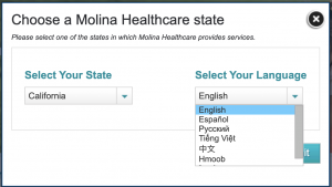 Example from Molina Healthcare